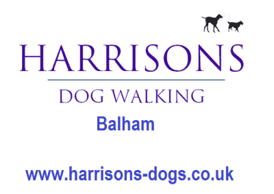 Harrisons Dogs Logo- Balham - Dog Walker and Daycare