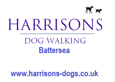 Harrisons Dogs Log- Battersea - Dog Walker and Daycare