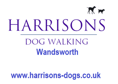 Harrisons Dogs Logo- Wandsworth - Dog Walker and Daycare