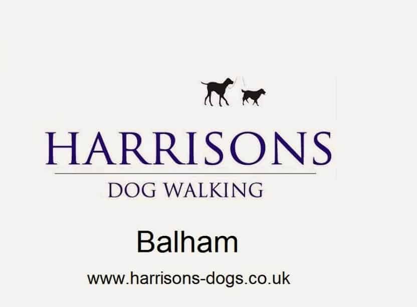 Balham SW12 Dog Walker - Walkers - Walking