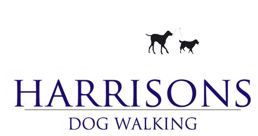 Harrisons Dogs Walkers